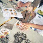 Entrega de sementes de girassol - Lorena, Leonel e Emily