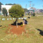Revitalização do pátio da escola -  Peterson, Diana e Lucas
