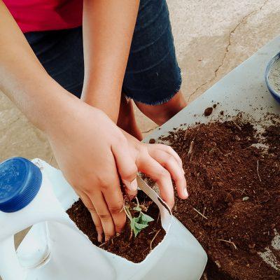 Alunos constroem horta comunitária (1)