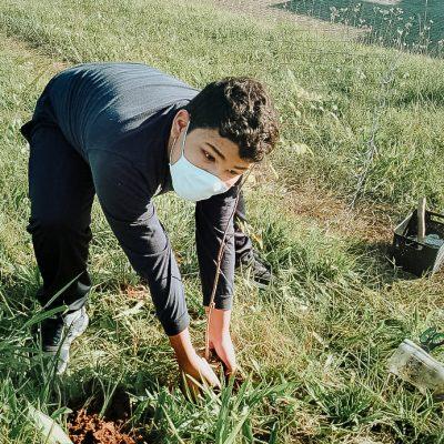 TURMA AL28 - alunos plantam mudas para ajudar a natureza