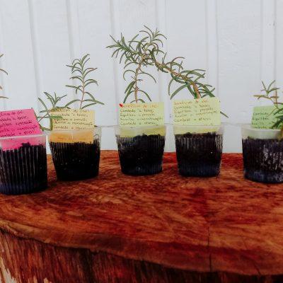 TURMA AL29 - sementes de amor em pote de iogurte (4)