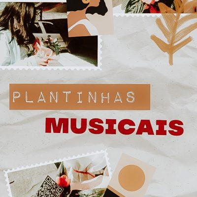 TURMA AL30 - alunos criam QR CODE e distribuem plantas musicais